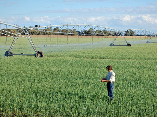 Woolshed and Devon Lateral Move Irrigation Development