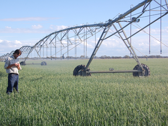 Mora Park Pivot and Rice Paddock Irrigation Development